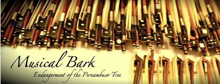 Musical Bark